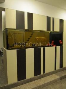 ho-ca-nguyen-bo1 (4)