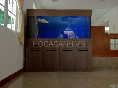 ho-ca-rong3 (4)
