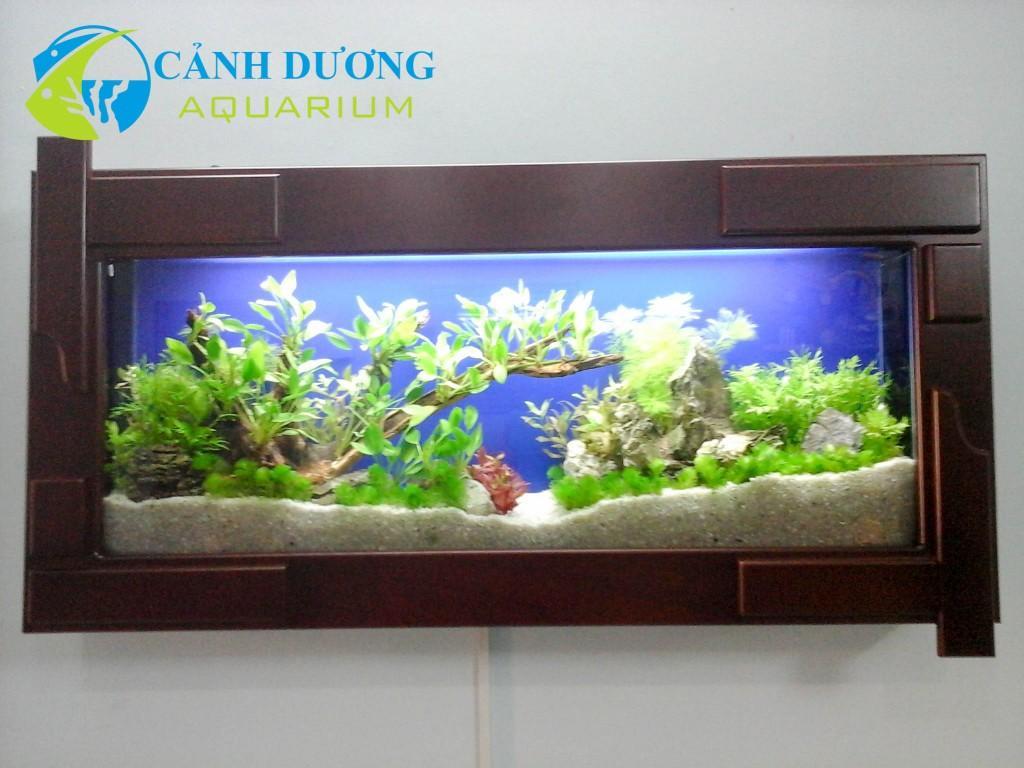 Hồ cá treo tường 73